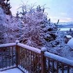 pyf cabin snow